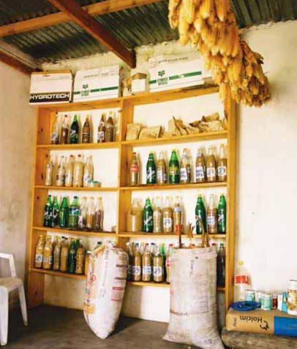 Model Law to draft their own national legal instruments. The seed bank at the KwaNgwanase Farmers'