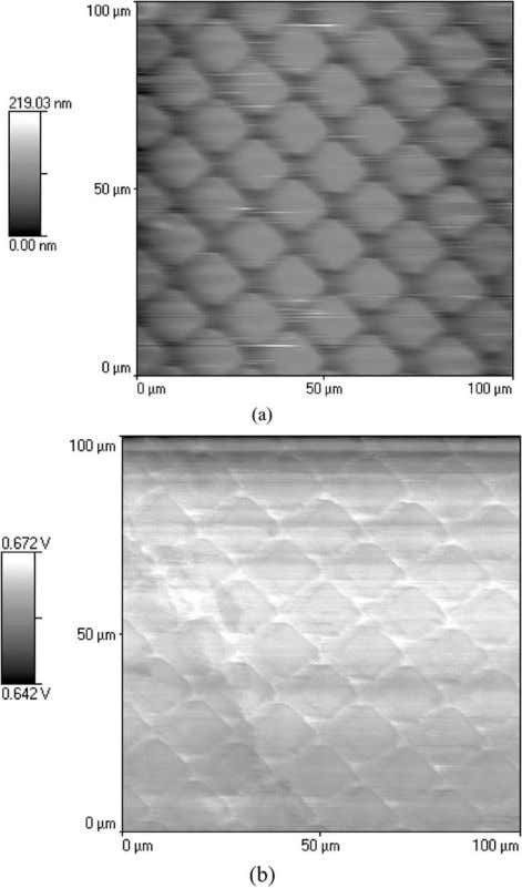 mapping polymer nonuniformity in phase segregated materials. Fig. 15. Simultaneous: (a) contact AFM and (b) SNMM