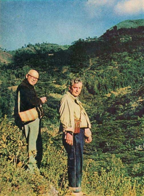 W ITH Professor Heim, Wasson (right) searches a mountainside near the village for specimens of