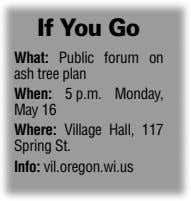 If You Go What: Public forum on ash tree plan When: 5 p.m. Monday, May 16