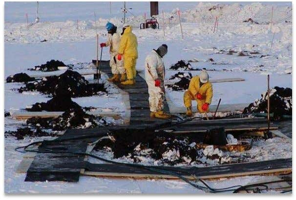 "the environmental and health risks the chemical posed. "" In February 2010 , BP's shareholders defeated"