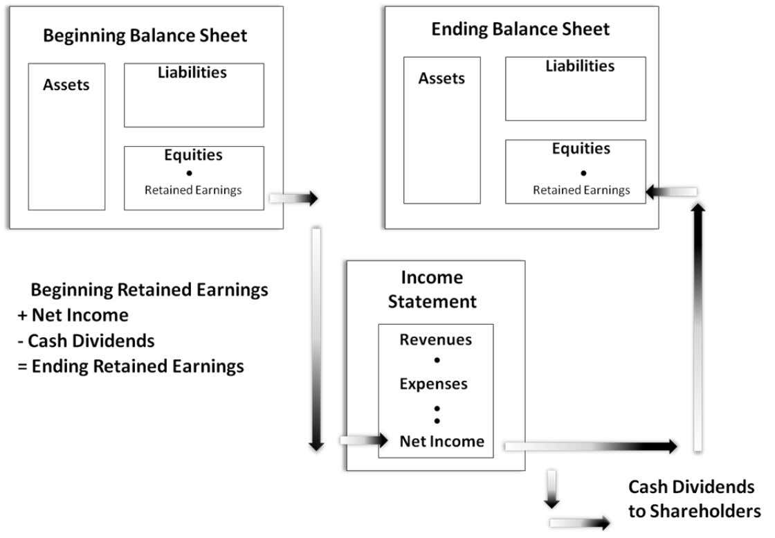 Income statement • Balance sheet and income statement are interrelated 12