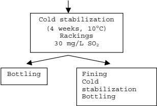 Cold stabilization (4 weeks, 10°C) Rackings 30 mg/L SO 2 Bottling Fining Cold stabilization Bottling