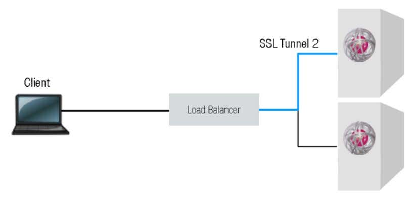 Servers (e.g. SSL tun- nel 2 in the following diagram). Image 9: SSL Bridging (load balancing