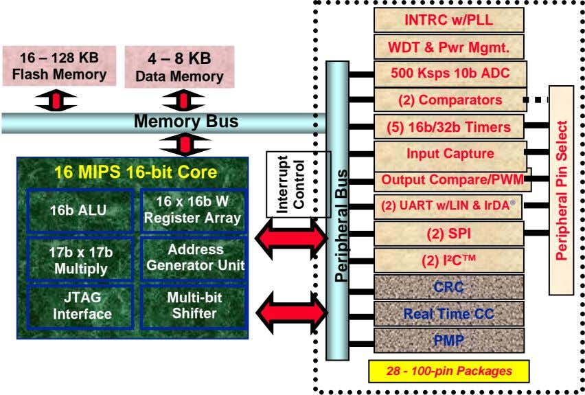 INTRC w/PLL WDT & Pwr Mgmt. 16 – 128 KB Flash Memory 4 – 8