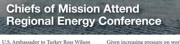 Chiefs of Mission Attend Regional Energy Conference