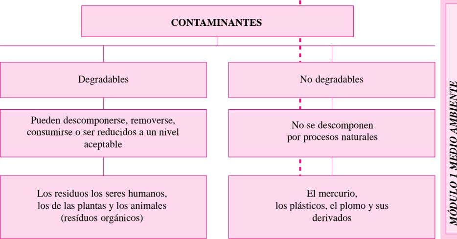 CONTAMINANTES Degradables No degradables Pueden descomponerse, removerse, consumirse o ser reducidos a un nivel