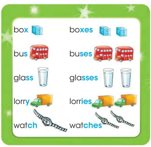 box boxes bus buses glass glasses lorry lorries watch watches
