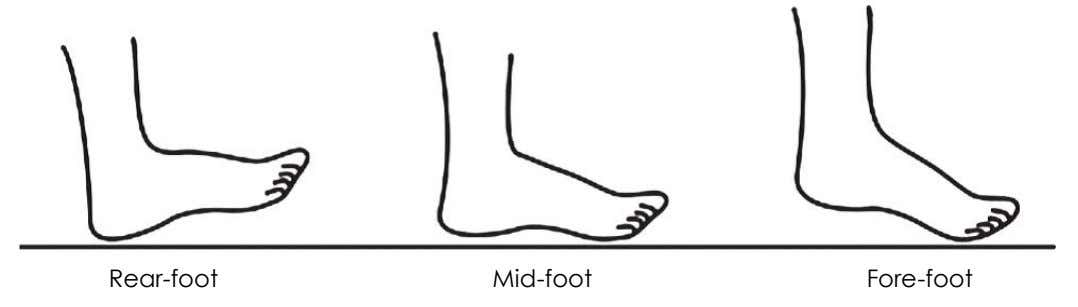 Rear-foot Mid-foot Fore-foot