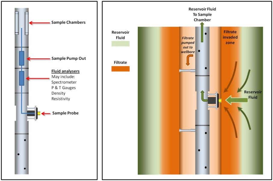 in this region to the sampling probe in order to be sampled. Figure 4—( left )