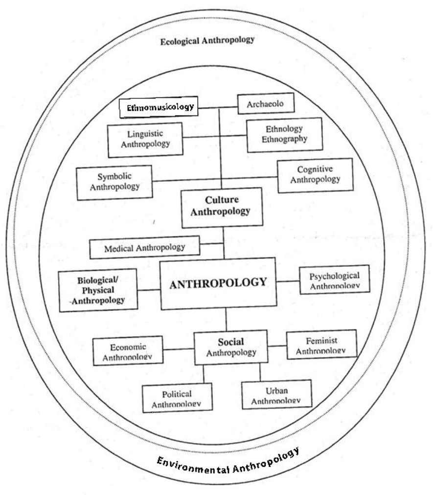 Anthropology: Science of Human Being Diagram 2: The interrelationship between specialized sub-fields of Anthropology