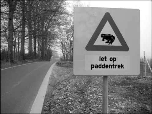 atop the pile that was a road. Photo © Marcel Huijser. Holland's concern for wildlife extends