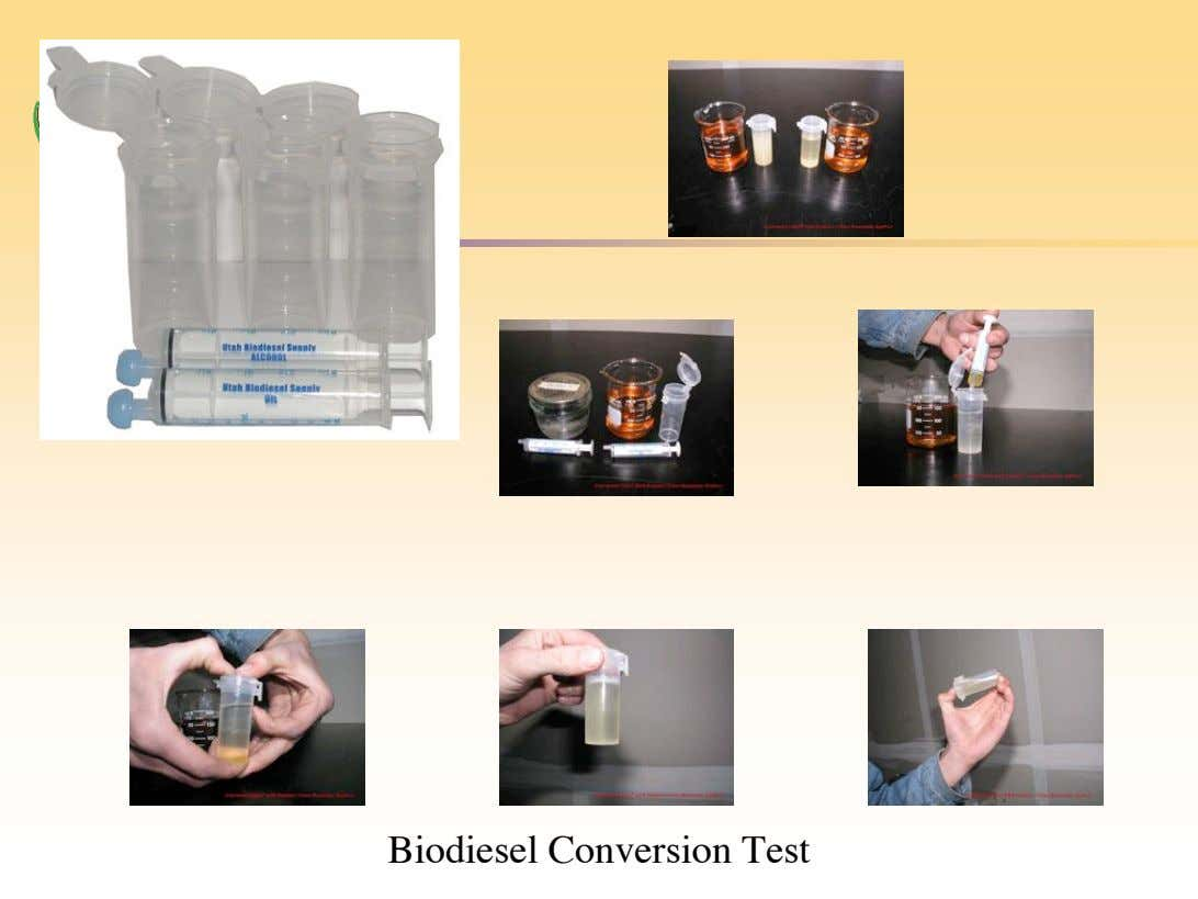 Biodiesel Conversion Test