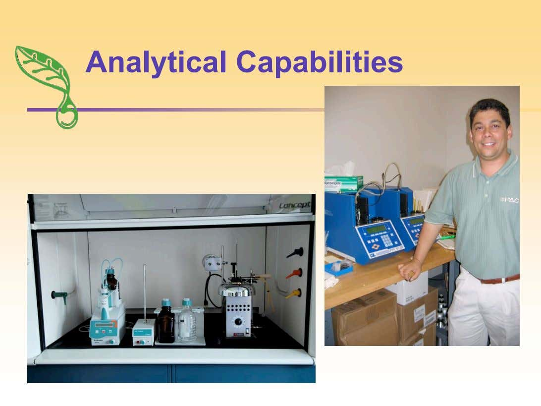Analytical Capabilities