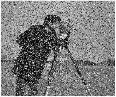 Figure 4.3: Example of ''Photographer'' with 40% random noise 1 1 . 4.2.2 Coherent Noise