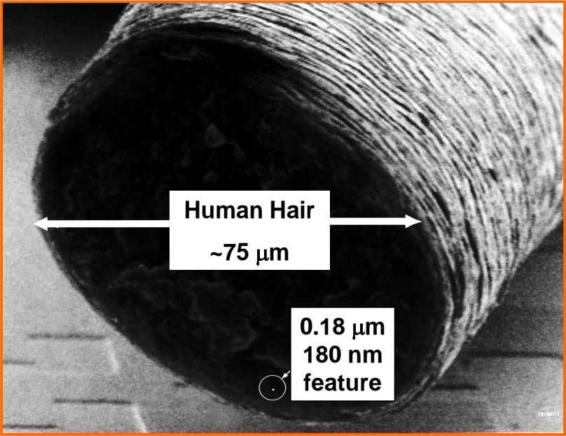 Human Hair ~75 m . 0.18 m 180 nm feature .