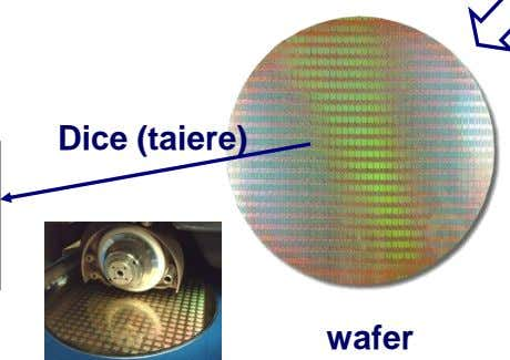 Dice (taiere) wafer