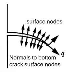 surface nodes q Normals to bottom crack surface nodes