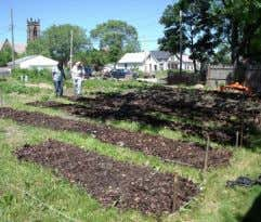 the market garden layout; prepared by Urban Growth Farms EcoVillage market garden 1 planting beds 2