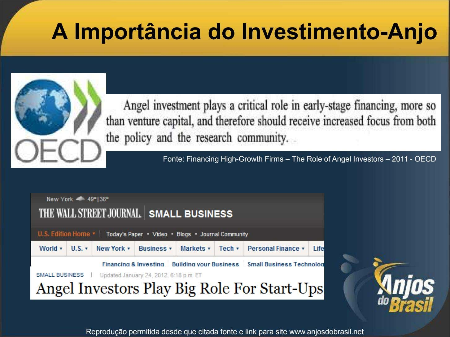 A Importância do Investimento-Anjo Fonte: Financing High-Growth Firms – The Role of Angel Investors –
