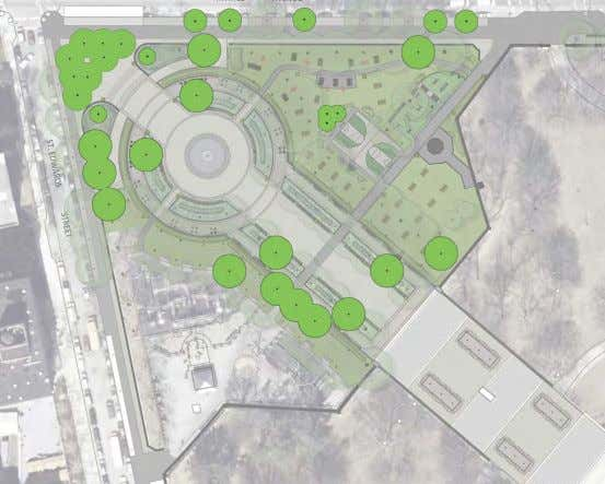 lives FORT GREENE PARK | PWB | Lower Plaza - Tree Diagrams TREE DIAGRAM - PROPOSED