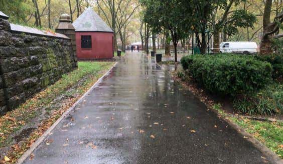 1 - VIEW OF DIAGONAL PATH FROM MYRTLE AVENUE FORT GREENE PARK | PWB -