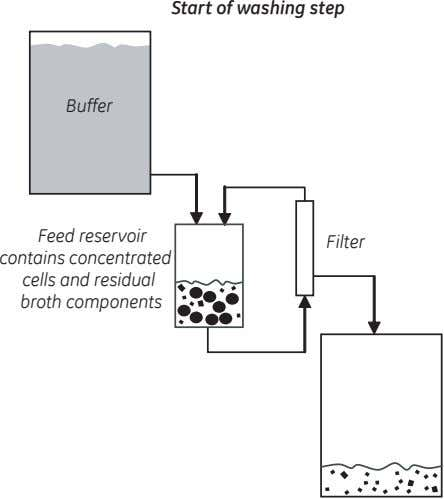 Start of washing step Buffer Feed reservoir contains concentrated cells and residual broth components Filter