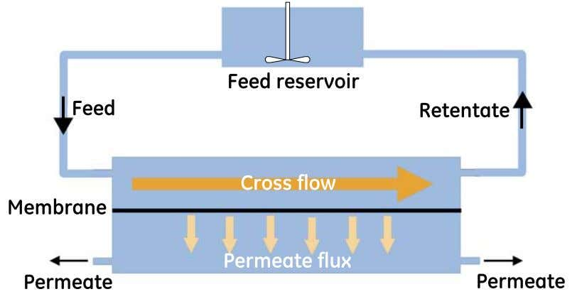 requires detailed knowledge and good filtration technique. Figure 1.1: Principle of cross flow filtration. Solution