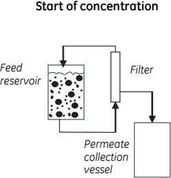 Start of concentration Feed Filter reservoir Permeate collection vessel