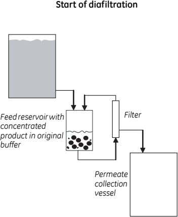 Start of diafiltration Feed reservoirwith concentrated product in original buffer Filter Permeate collection vessel