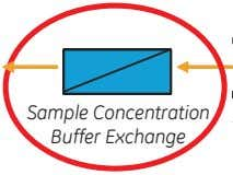 Sample Concentration Buffer Exchange