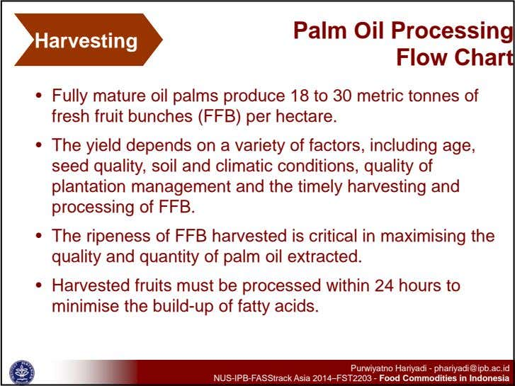 Harvesting Palm Oil Processing Flow Chart • Fully mature oil palms produce 18 to 30