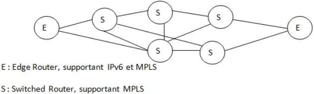 pourra transiter via les routeurs internes qui ne regarderont que le label. Figure 25 : exemple