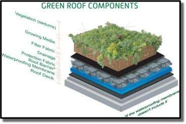 Layers of a typical green roof system Green Roofing/Rooftop Gardens Our green roof consists of multiple