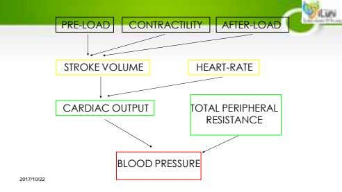PRE-LOAD CONTRACTILITY AFTER-LOAD STROKE VOLUME HEART-RATE CARDIAC OUTPUT TOTAL PERIPHERAL RESISTANCE BLOOD