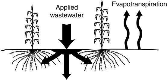 Evapotranspiration Applied wastewater