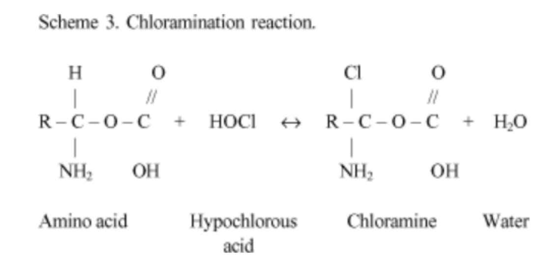 The chloramination reaction between chlorine and the amino group (NH) forms chloramines that interfere in cell