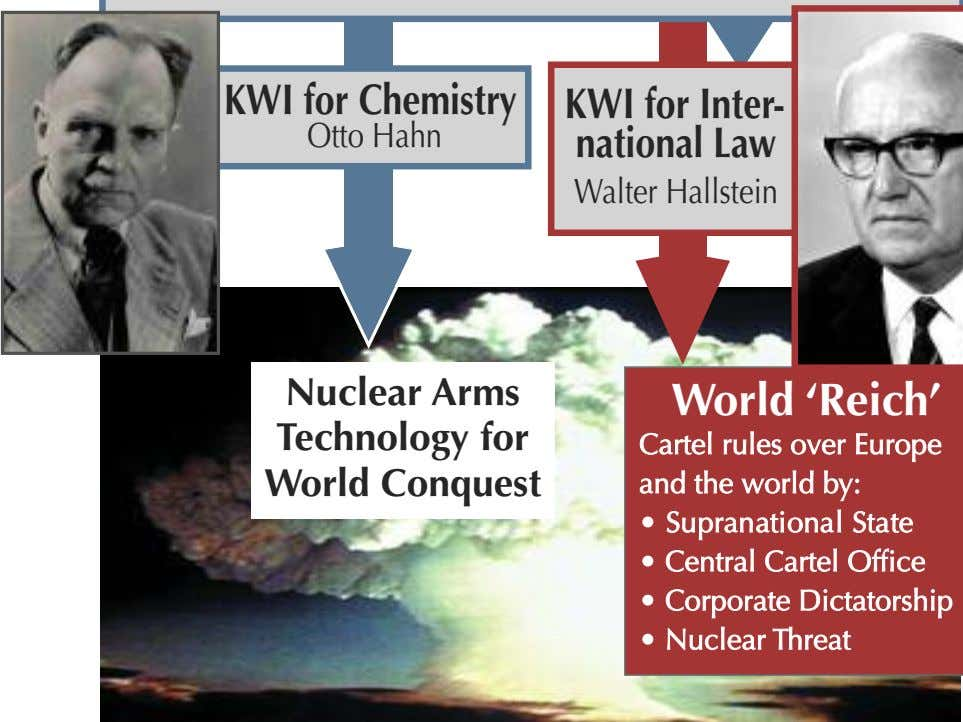 KWI for Chemistry KWI for Inter- Otto H ahn national Law Walter Hallstein Nuclear Arms