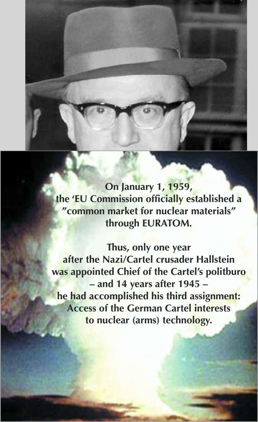 "On January 1, 1959, the 'EU Commission officially established a ""common market for nuclear materials"""