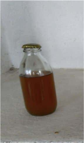 The concentrated product is stored for later use [88] . Fig. 4. Nannari sharbat prepared using