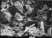 Properties of Concrete  Scanning-electron micrographs of hardened cement paste