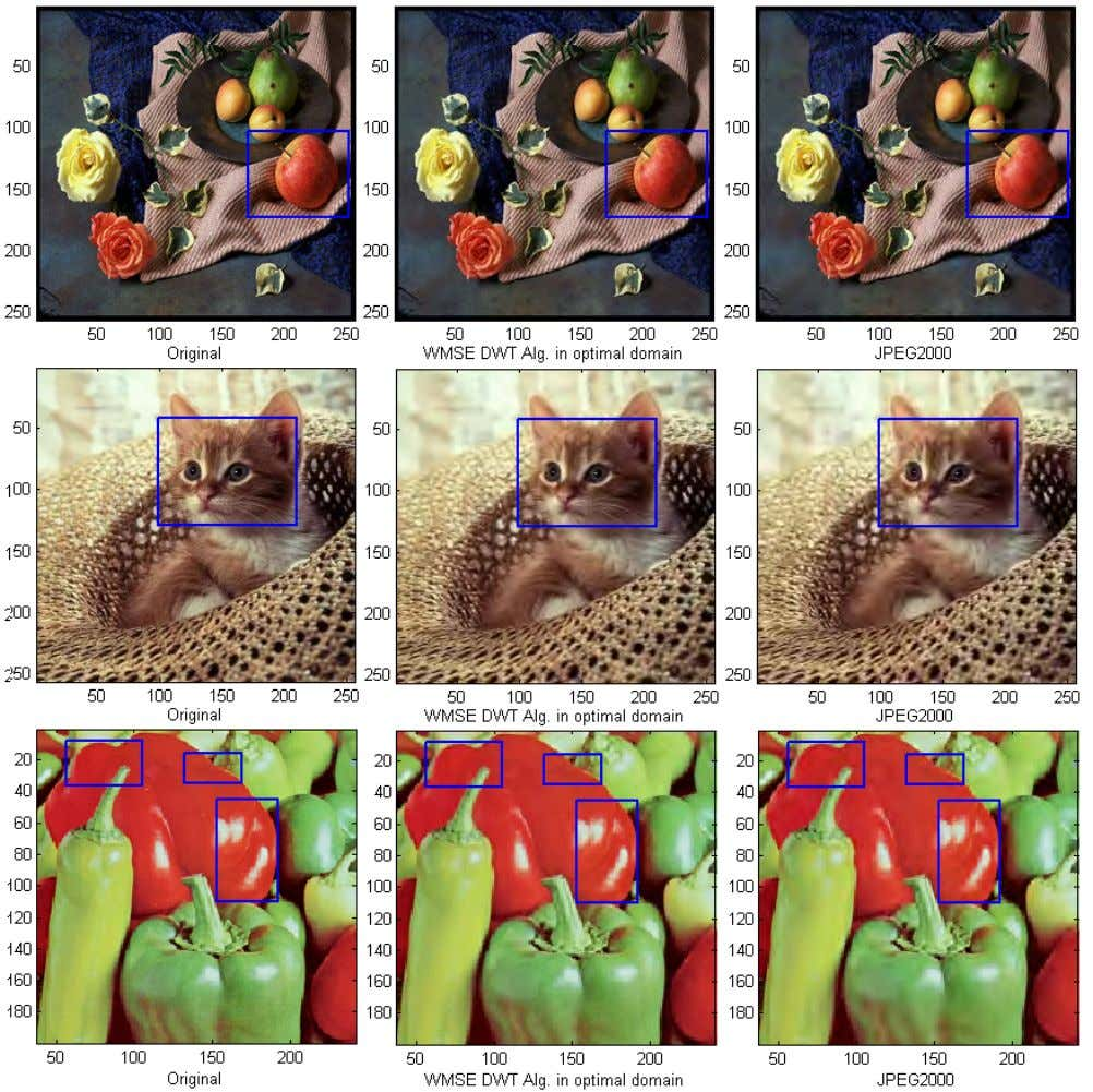 (IJC) Volume 2 Issue 2 , June 2013 www.seipub.org/ijc FIG. 5 FRUITS, CAT AND PEPPERS IMAGES