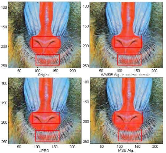 THE OTHER METHODS, ESPECIALLY IN THE MARKED AREAS. FIG.2 COMPRESSION RESULTS FOR THE BABOON (ZOOMED IN)