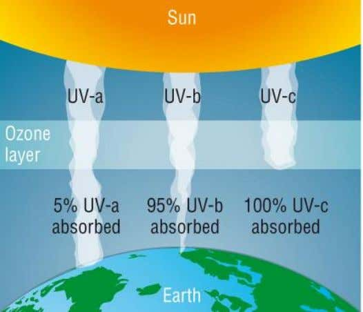 and UV-C have enough energy to cause potentially absorbs more than 95% of incoming UV-B and