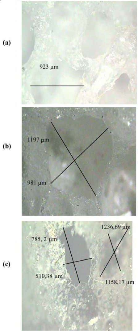 3386 Stiti et al. Asian J. Chem. Fig. 3. Optical microscopy micrographs of the simple of