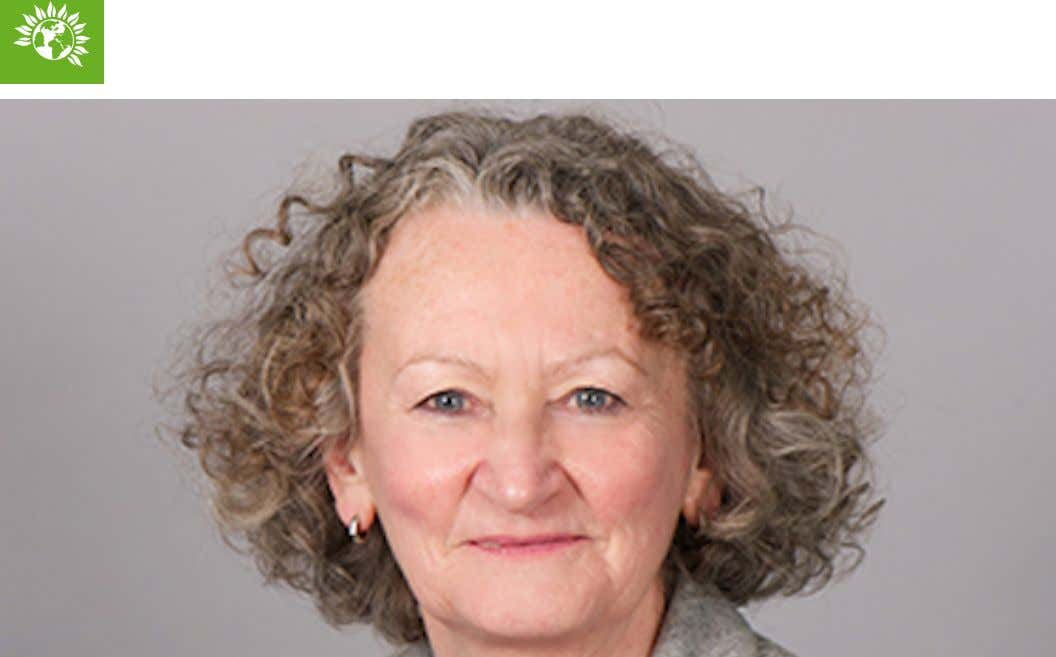 Green Party Baroness Jenny Jones There is every chance that some of the plastics, cardboard