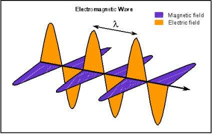 as well as to the direction of the forward movement of the wave. (Fig 3) Yerkes