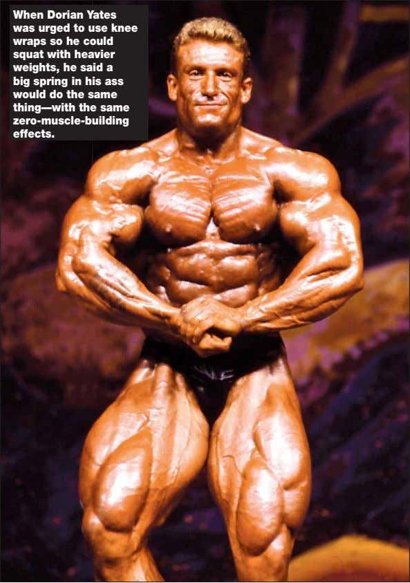 Free download from imbodybuilding.com Free download from imbodybuilding.com