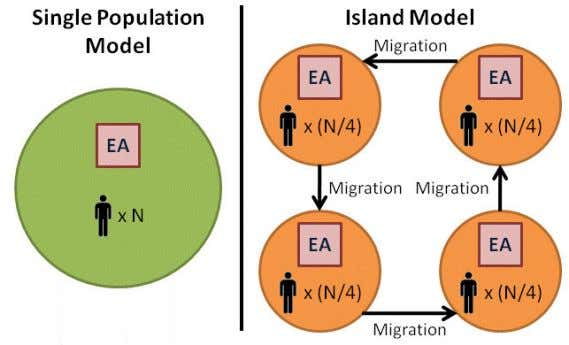 Figure 8: Differences between Single Population Model & Island Model The Island Model has often