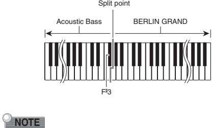 Split point Acoustic Bass BERLIN GRAND F # 3